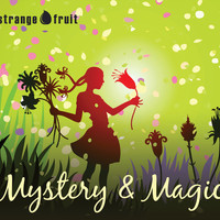 Mystery and Magic